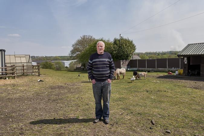 Man with farm animals